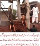 daily pakistan 16 aug1